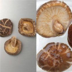 国産乾椎茸4cm~5cm(茎付)