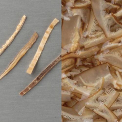 乾椎茸カット1mm×20mm